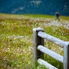 dolomiti_color_20